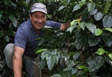 Coöperatie: COOPEDOTA Costa Rica