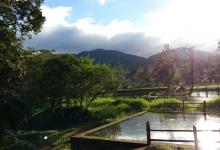 Coöperatie: COMSA Honduras