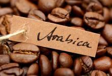 Specialty koffie dankzij duurzame landbouwmethoden
