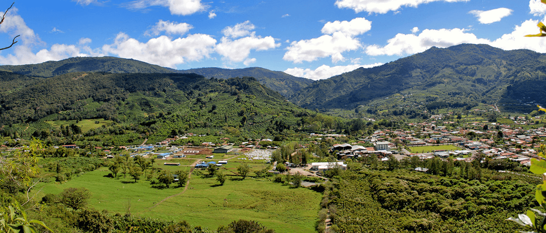 Costa-Rica-Coope-Dota-koffieplantage